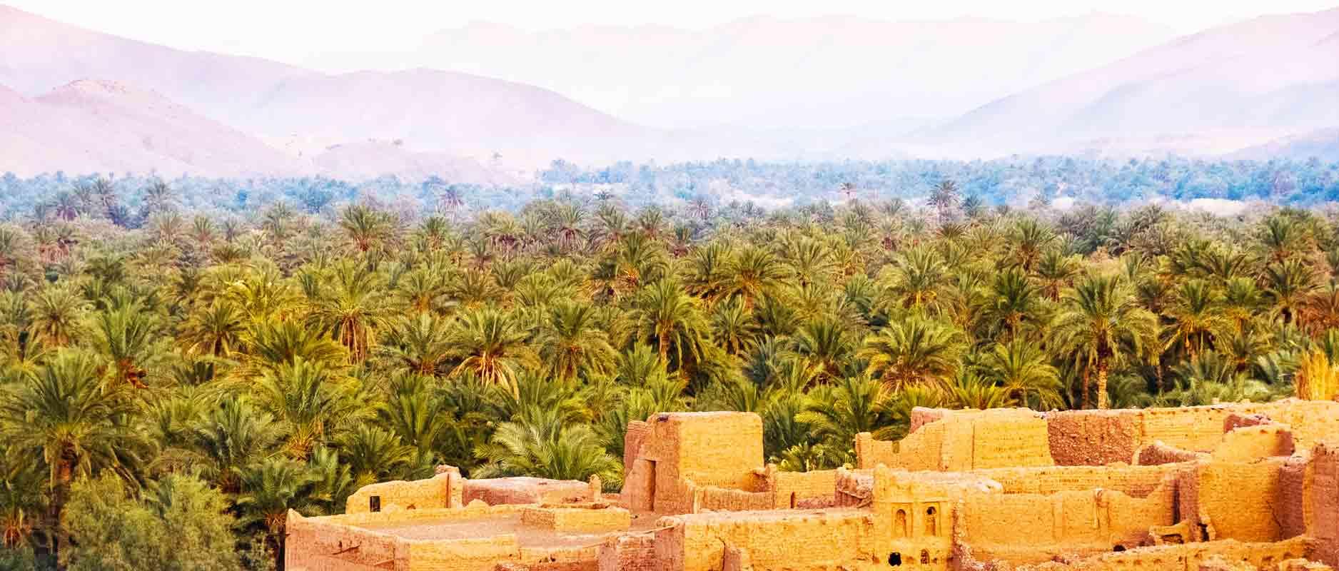 Jericho | Stad uit de Bijbel