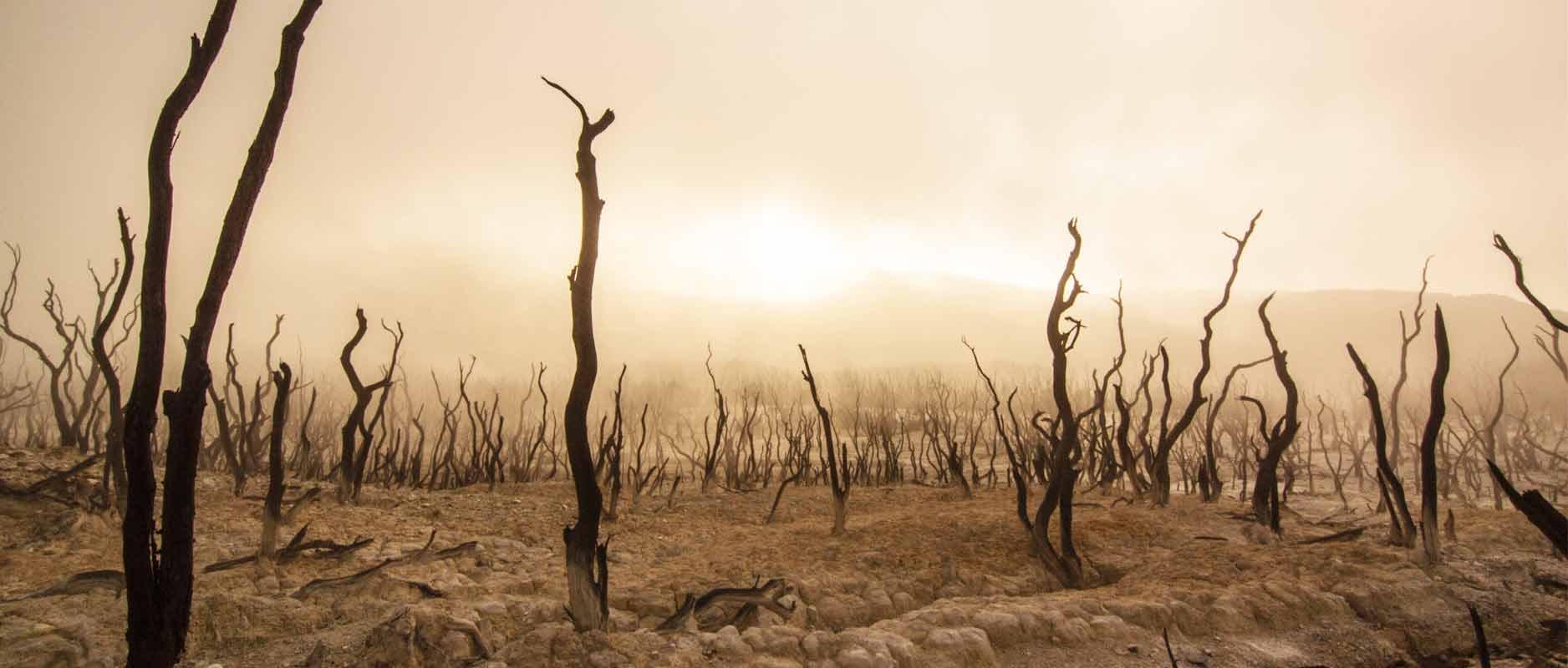 De verwoeste steden Sodom en Gomorra